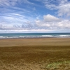 View Piha Beach - Auckland NZ