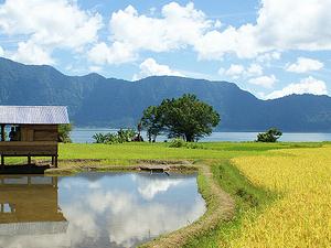 Sumatra Island
