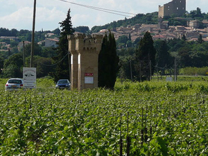 Rhone Valley Wine Tour from Avignon: Chateauneuf-du-Pape and Tavel Photos