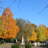 Vale In Fall