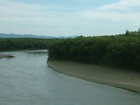 Teshio River