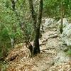 Friedrich Wilderness Park