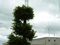 Grimeton VLF transmitter