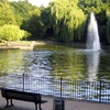 The Swan Pond In Volkspark Friedrichshain