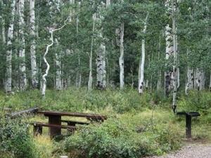 Warner Lake Campground