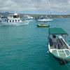 Wassertaxi On Puerto Ayora