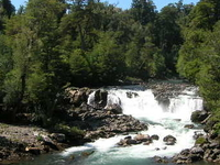 Puyehue National Park