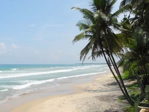 Sri Lanka Tour and Surf Holiday 14 Days