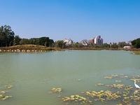 Weiwuying Metropolitan Park