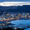 Wellington City @ Dusk From Mount Victoria