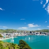 Wellington City From Mount Victoria NZ