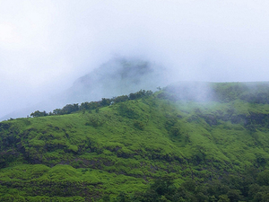 Walking Safaris and Wildlife Tours in Western Ghats Photos