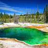 West Thumb Geyser Basin Trail - Yellowstone - USA