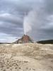 White Dome Geyser - Yellowstone - USA