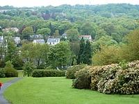 Bingham Park