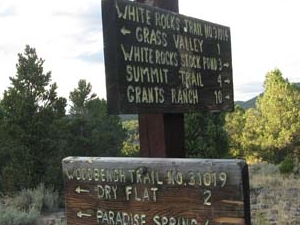Whiterocks Trail