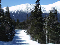 Wildcat Mountain Ski Resort
