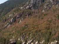 Wildcat Mountain