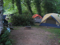 Willapa Bay Koa Campground