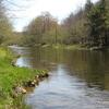Willowemoc Creek