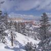 Winter Storm At Bryce Canyon