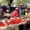 Merchants Sell Tomatoes & Fruits At Sikasso