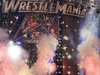 WrestleMania XXV Stage At Reliant Stadium