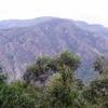 Wadbilliga National Park