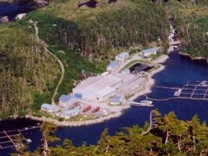 Esther Island