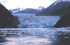 Sawyer Glacier In The Background