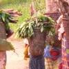 Women Returning Gardens Basankusu