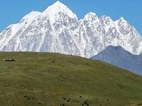 Yala Snow Mountain