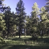 Yavapai County Trail Views AZ