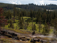 Yellowstone Lake Overlook Trail