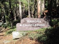 Yosemite Wawona Campground