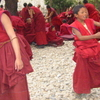 Young Monks Of Drepung