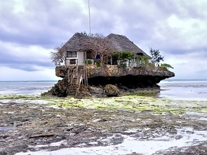 Zanzibar Travel Leads
