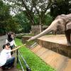 Zoo Negara - View