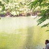 Zwięzło Nature Reserve