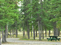 Golden Bear Rv Park & Motel
