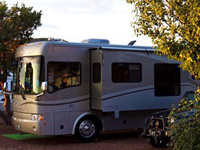 Grand Canyon Koa