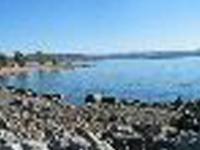 Folsom Lake SRA Beals Point Campground