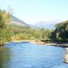 Dosewallips State Park Campground
