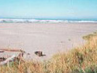 Pacific Beach State Park Campground