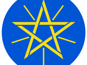 Consulate General of the Federal Democratic Republic of Ethiopia