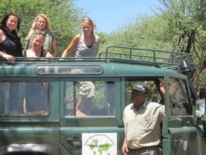 4-Days Lake Manyara / Ngorongoro / Tarangire Photos