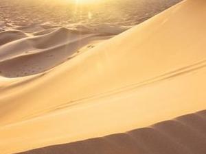 ABU DHABI OVERNIGHT DESERT SAFARI Photos