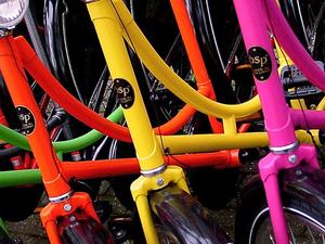 Amsterdam culinary bike tour Photos
