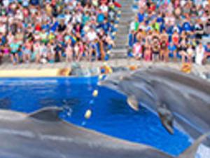 Aqualand + Combi Ticket Photos