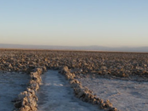 ATACAMA SALT FLAT / TOCONAO AND HIGH PLAIN LAGOONS Photos